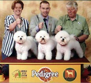 BIS-2 breeder's group at the World dog show in Porto 2001